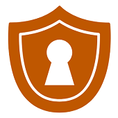 Secure Login Icon