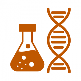 Graphic image of a double helix and an erlenmeyer flask