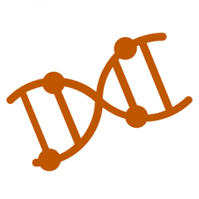 Image of a Double-Helix Strand of DNA